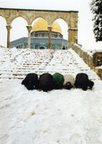 Dome of the Rock II, Jerusalem, 2000